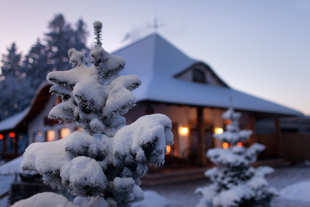 cottage house covered in snow